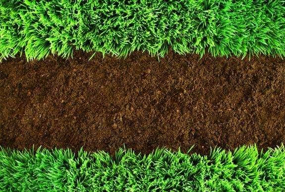 国际经验 | 我国土壤问题特征及国外土壤环境管理经验借鉴