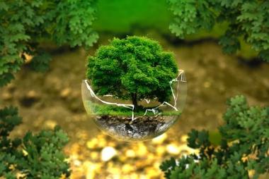 环境部:依法推进生态环境保护工作再上新台阶