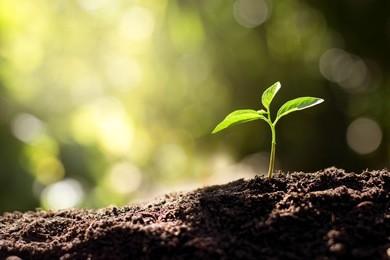 土壤及地下水修复行业发展现状